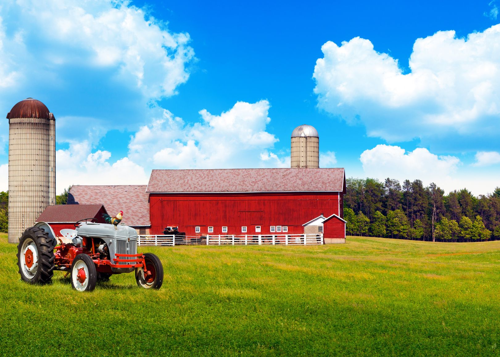 Miami Farm & Ranch Insurance